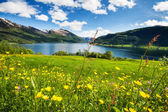 Mountain lake in Norway — Stock Photo