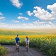 Teen couple riding bike in sunflower field — Stock Photo #44905679