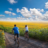 Teen couple riding bike in sunflower field — Stock Photo