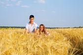 Teen couple on the wheat field — Stock Photo