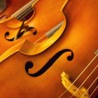 Violins — Stock Photo #25811955