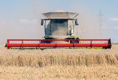 Combine harvesters — Stock Photo