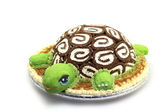 Turtle Cake — Stock Photo