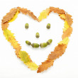 Autumn leaves heart shaped face  — Stock Photo