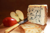 Roquefort and sliced apple low angle — Stock Photo
