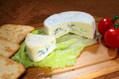 Blue-veined camembert — Stock Photo