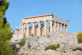 Temple of Aphaia, Aegina — Stock Photo