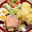 Homemade salmon meal from above — Stock Photo