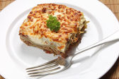 Homemade lasagne verdi — Stock Photo