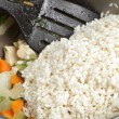 Adding arborio rice — Stock Photo