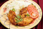 Kashmiri chicken with rice — Stock Photo