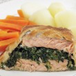 Salmon en croute meal — Stock Photo