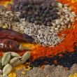 Spice assortment — Foto Stock