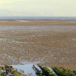 SwanseBay tidal flats — Stock Photo #39243739