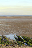 Swansea Bay tidal flats — Stock Photo