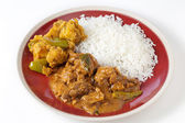 Chettinadu chicken curry with veg and rice — Stock Photo