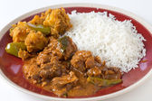 Chicken curry and veg with rice — Stock Photo