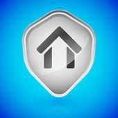 House, home on shield. Home security. — Vector de stock