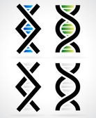 DNA strand, helix — Stock Vector