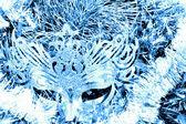 Ice mask — Stock Photo