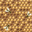 Stock Vector: Close up view of the working bees on honeycells.