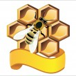 Bee and honeycombs — Stock Vector