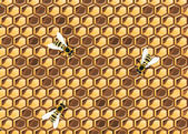 Close up view of the working bees on honeycells. — Cтоковый вектор