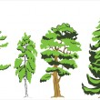 Vector de stock : Trees isolated
