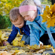 Children collecting autumn leaves — Stock Photo