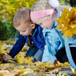 Children searching for autumn leaves — Stock Photo