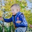 Excited little boy with autumn leaves - Foto Stock