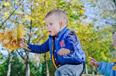Excited little boy with autumn leaves — Stock Photo