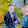 Boy and Girl Holding Autumn Leaves — Stock Photo #14058649