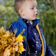 Little boy with autumn leaves — Stock Photo