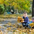 Youngsters collecting autumn leaves — стоковое фото #14061991