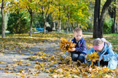 Youngsters collecting autumn leaves — Stock Photo