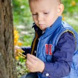 Engrossed little boy looking at an insect — Stock Photo