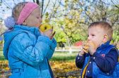As crianças comer maçãs — Foto Stock