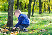 Little boy playing in lush woodland — Stock Photo