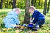 Abi ve kardeş bir mala ile kazma — Stok fotoğraf