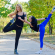 Stock Photo: Two young women exercising in park
