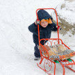 Little boy pushing his sled in snow — Stock Photo