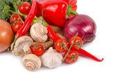 Fresh farm vegetables — Stock Photo