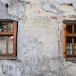 Stock Photo: Two wooden windows on old degraded wall