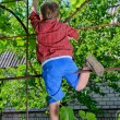 Young boy playing in the garden — Stock Photo