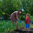 Stock Photo: Little boy helping his mother in garden