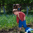 Stock Photo: Little boy working in the garden