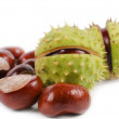 Harvested sweet chestnuts — Stock Photo #31422673