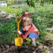 Stock Photo: Little boy planting vegetables