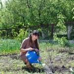 Happy woman tending to her vegetable garden — Stock Photo
